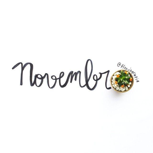 floriografia's photo on Instagram - novembro