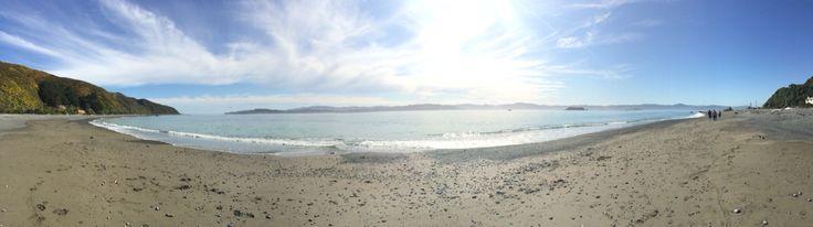 Eastbourne NZ beaut