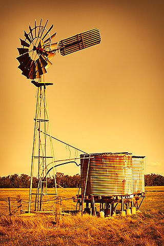 Windmills and water tanks. We had a water tank near the house. I have memories of the smell of mint and lots or green ivy around the tank. CC