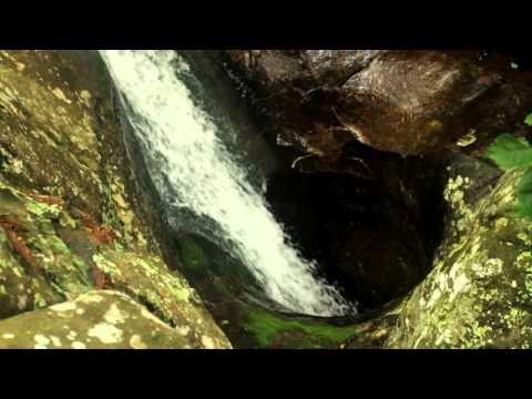 Arkansas' Glory Hole Falls --  beautiful video!!