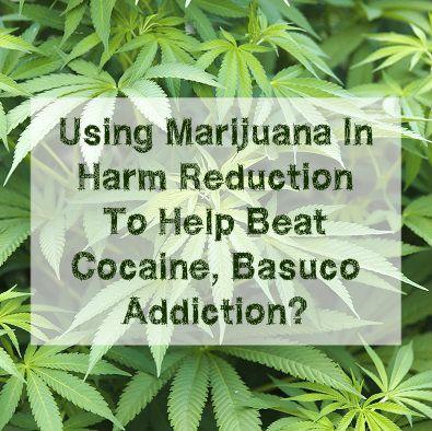 How Can Using Marijuana In Harm Reduction Help Beat Cocaine, Basuco Addiction? | Drug Rehab
