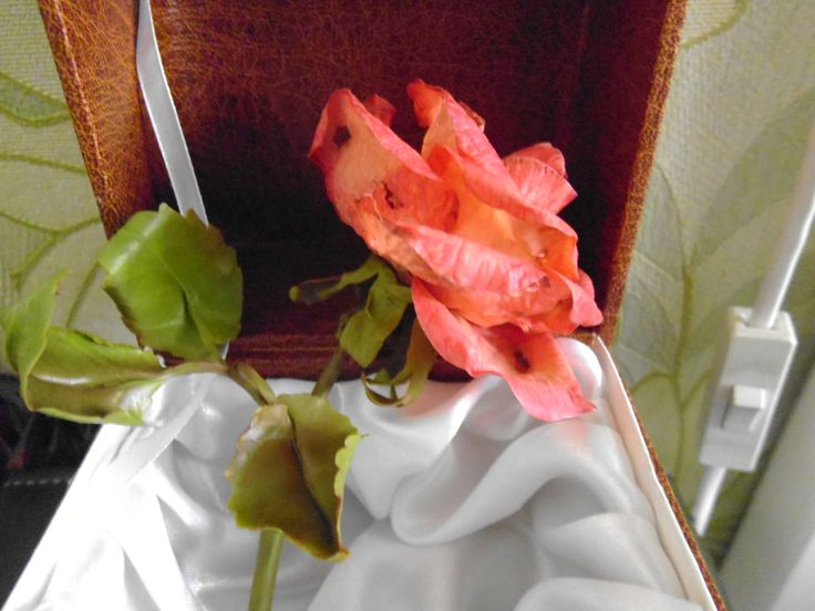 Засушенная роза из холодного фарфора