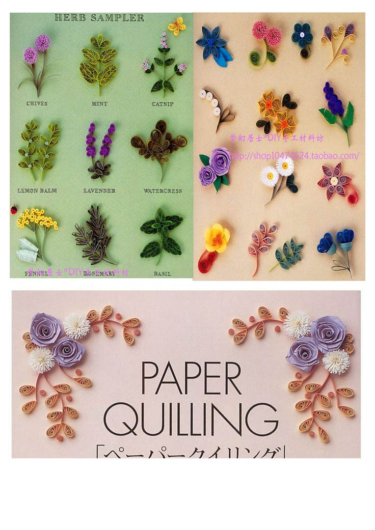 257 best beginners quilling images on pinterest quilling for Quilling patterns for beginners