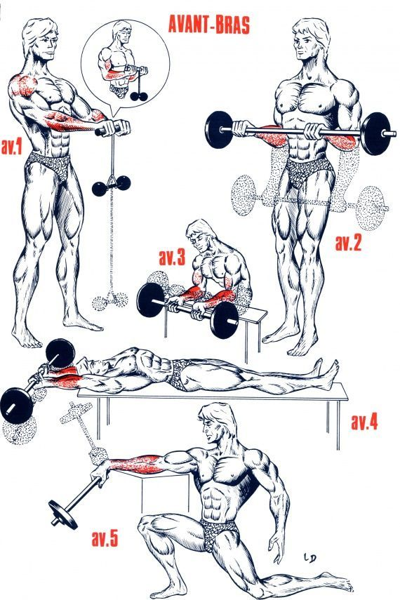 shoulder musculation - Buscar con Google