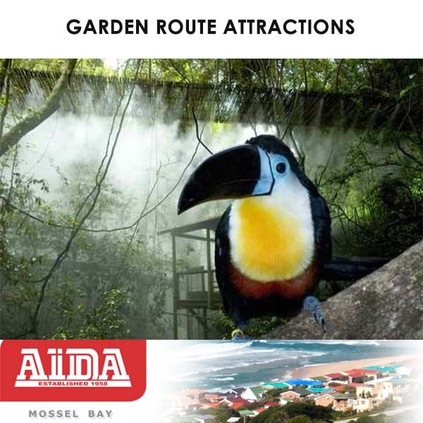 Attractions in the Garden Route. Birds of Eden in South Africa are the largest single dome free-flight aviary in the World. This forested sanctuary is home to over 3,000 birds of around 220 species.  #birds #attractions #gardenroute