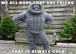 Image result for we all have that friend who is always cold