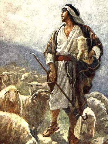 Other Food: daily devos: Of shepherds and sheep