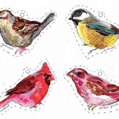 Printable Winter Birds {Free Printables}- sparrow, chickadee, Carolina wren, purple finch, cardinal, and 3 more