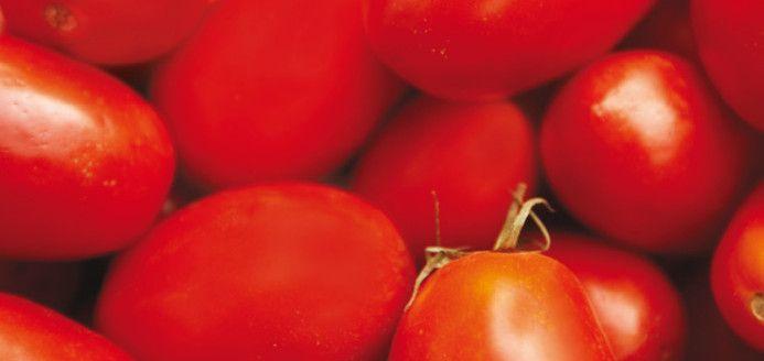 Sauce tomate avec tomates fraîches sans machine Recettes   Ricardo elle est super bonne!!