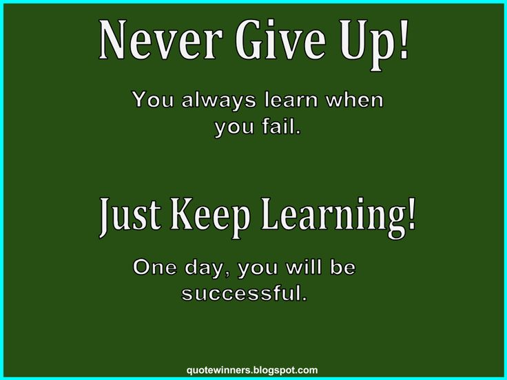 Success Quotes: Quote 3: Never Give Up