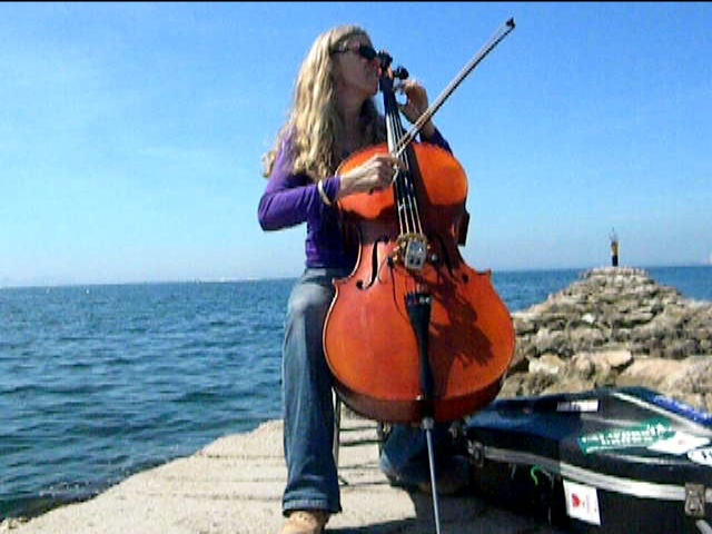 cello. Dock of the bay........: The Bays, Music Life