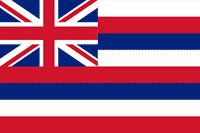 This is the flag of Hawaii.Hawaii is a state.
