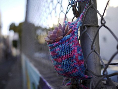 Plantbombing: Colorful Yarn-Wrapped Plants Soften Up The City : TreeHugger