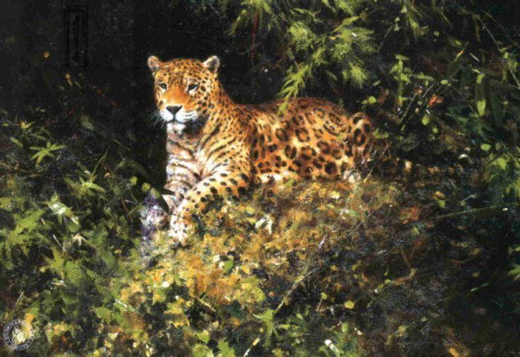 david shepherd  jaguar print