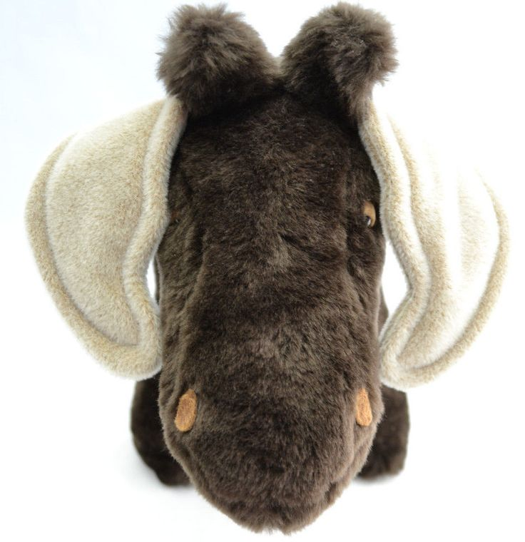 1000+ Images About MOOSE IN THE HOUSE! On Pinterest