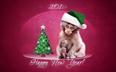 Scarica sfondi 2016, anno nuovo, anno di scimmia