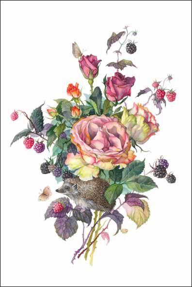 Colca beauty  - Olga Ionaytis