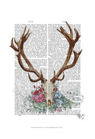 Deer, Photos and Prints at Art.com