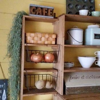 カラーボックスなど棚に設置して野菜のストックにも便利ですね。