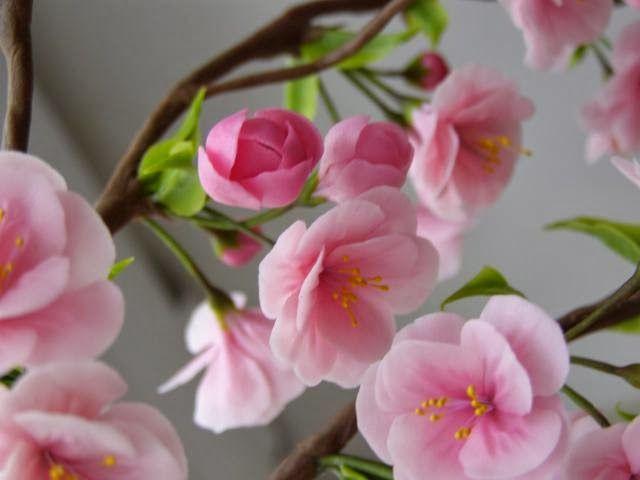 Мастер-класс: Цветы сакуры из полимерной глины | Корица