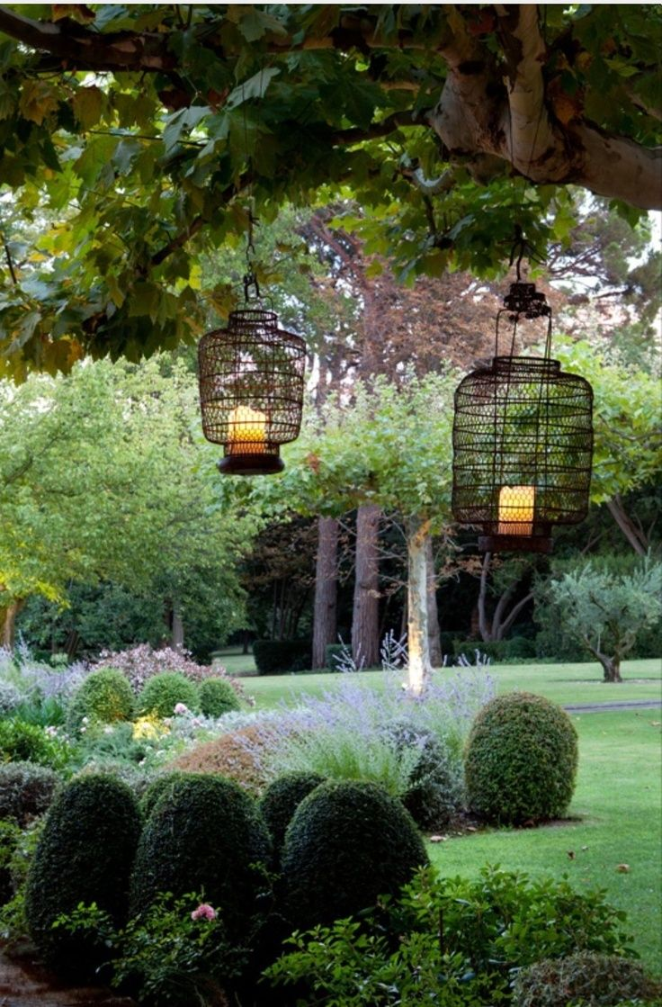landscape, outdoor lighting, topiary, garden design, shade