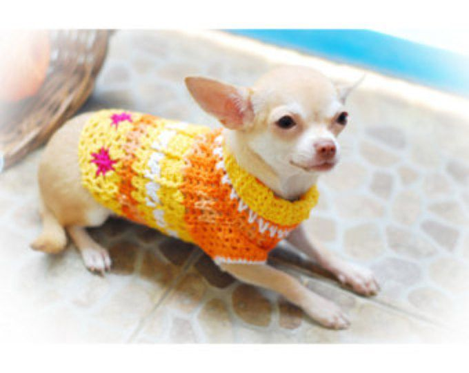 25 best ideas about chihuahua clothes on pinterest dog - Dog clothes for chihuahuas ...