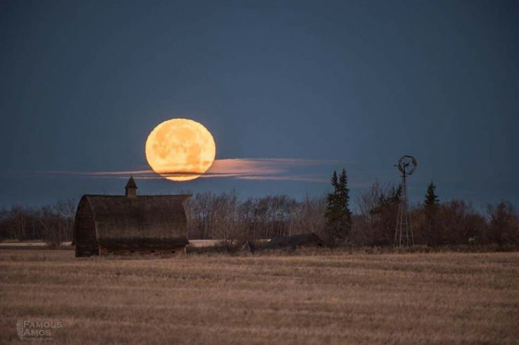 Super Moon set this morning (11/14/16) over a farmstead near Grande Prairie Alberta. By Famous Amos Photography