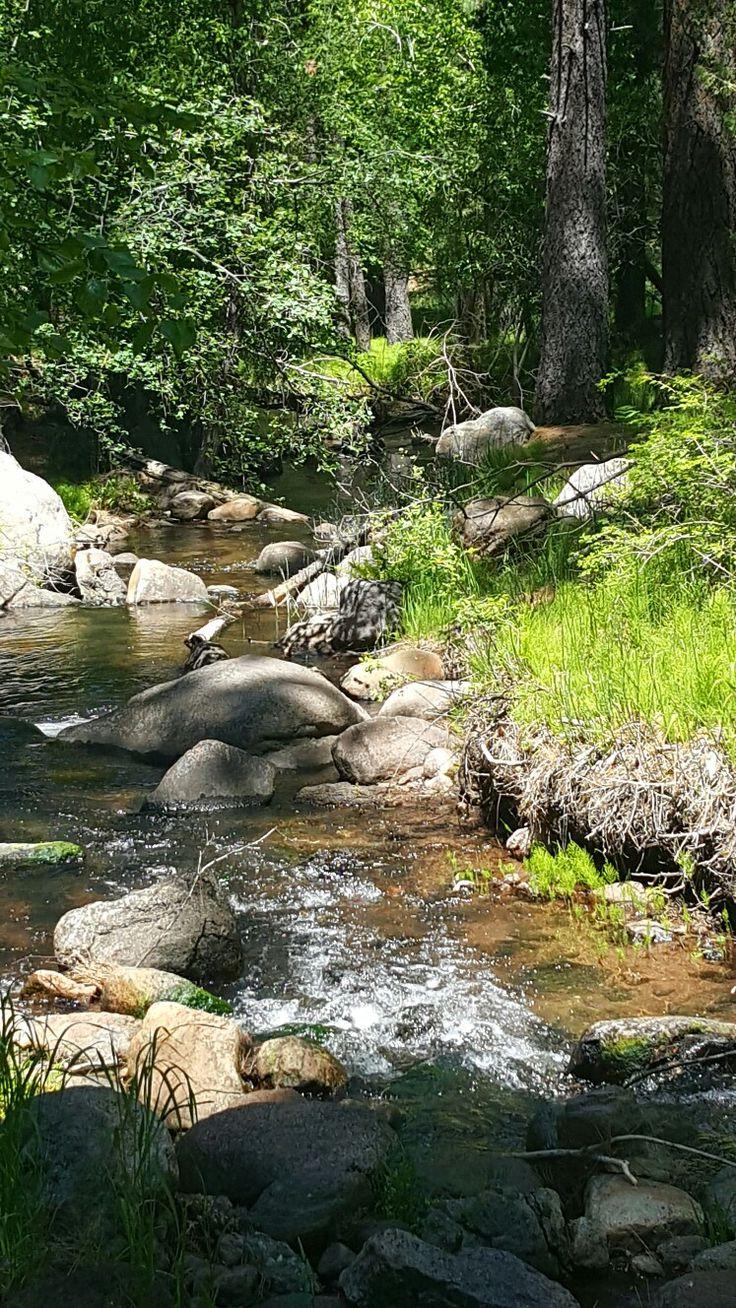A creek running thru Pine Mountain located in Pine Valley ...