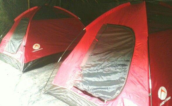 Jungle camp accommodation