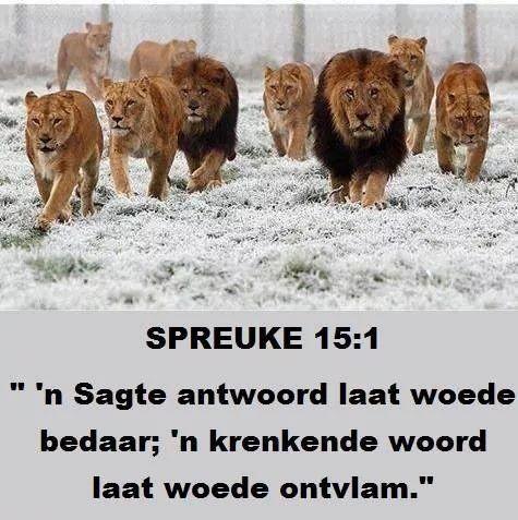 SPREUKE 15:1-2 'n  SAGTE antwoord keer die grimmigheid af, maar 'n krenkende woord laat die toorn opkom.  Die tong van die wyse getuig van grondige kennis, maar die mond van die dwase laat sotheid uitborrel.