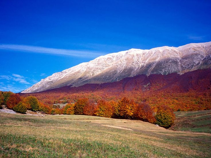 Only an hour's drive east of Rome, it's surprising that the hordes have failed to find magical Abruzzo – where diverse landscapes encompass ancient beech forests, vast meadows, medieval mountain borghi (villages), and some of Europe's best beaches.  Book hostels in Abruzzo:  http://www.hostelsclub.com/stateregion-en-215.html
