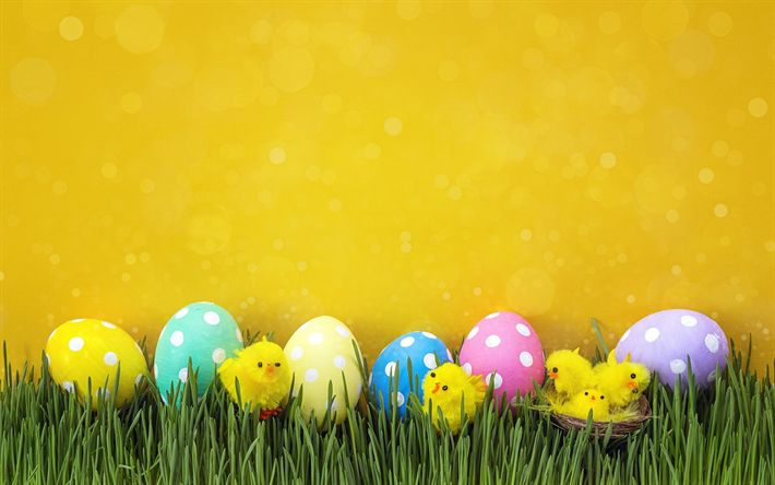 Download wallpapers Easter eggs, yellow wall, yellow chicken, Easter, decoration, spring