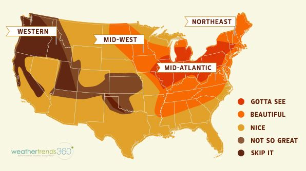 Looking for a fall trip, check this map for the best areas to see foliage in the country.