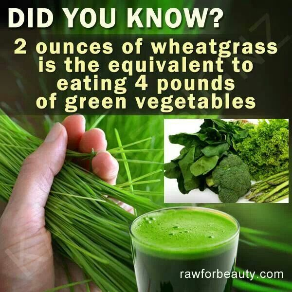 Only problem is my juicer doesn't juice wheatgrass very well.