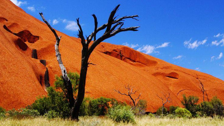 Om je rondreis door Australië compleet te maken, mag je de uitgestrekte rode vlaktes van de Outback niet missen. Vooral een rondreis door de Red Centre met al haar highlights is het huren van een stevige 4WD waard. Terwijl je door het ruige landschaptourt, wordje elke keer verrast...