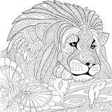 Vector: Zentangle stylized cartoon lion (wild cat, leo zodiac). Hand drawn sketch for adult antistress coloring page, T-shirt emblem, logo or tattoo with doodle, zentangle, floral design elements.