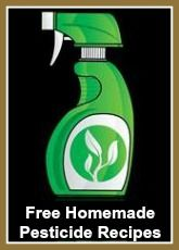 Free Recipes for Homemade Organic/Natural Pesticides for Bugs and Animal Repellants! Chemical Free Recipes to make at home!