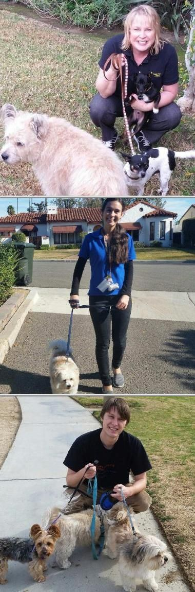 Lisa Daly is dedicated in providing dog sitting and pet care services. She is known to be reliable and responsible in handling cat sitting and dog walking jobs. Check out her dog walking rates today.