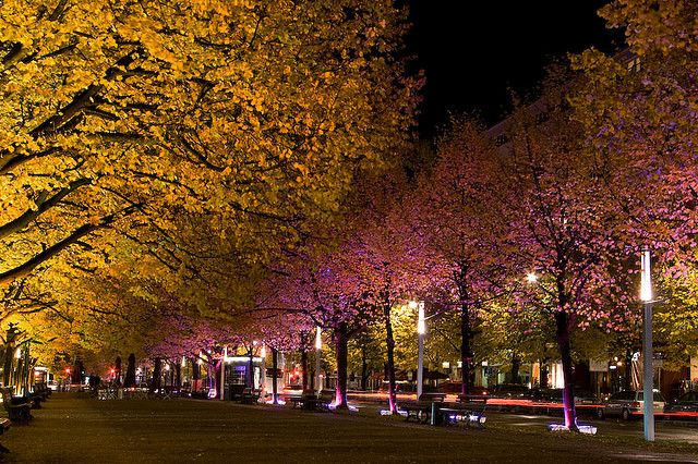 Unter den Linden, Berlin. I need to go here in summer.