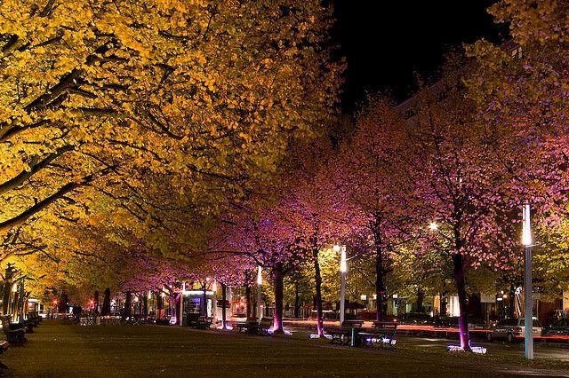 Unter den Linden, Berlin. I need to go here in summer.