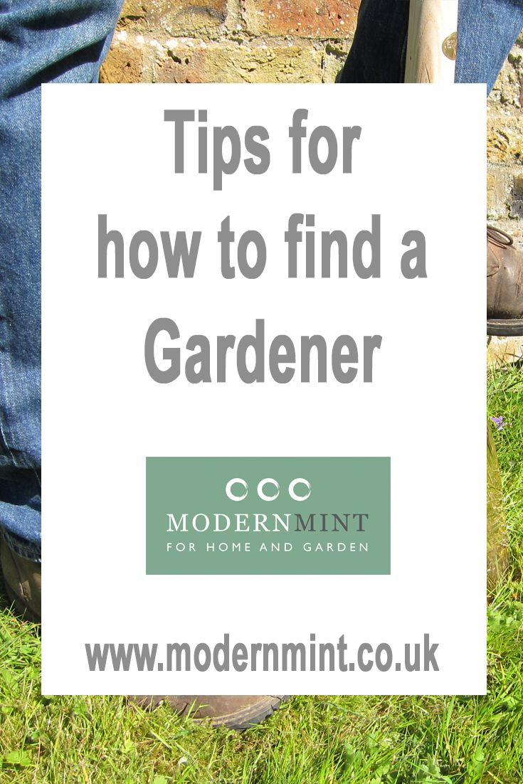 Advice and tips on how to find a gardener. As a gardener for many years, we feel well-placed to suggest what you might look for when employing one. There are a few major facets to consider, but the first question to ask is – what help do I need in the garden? Click here to read more or pin to read later!