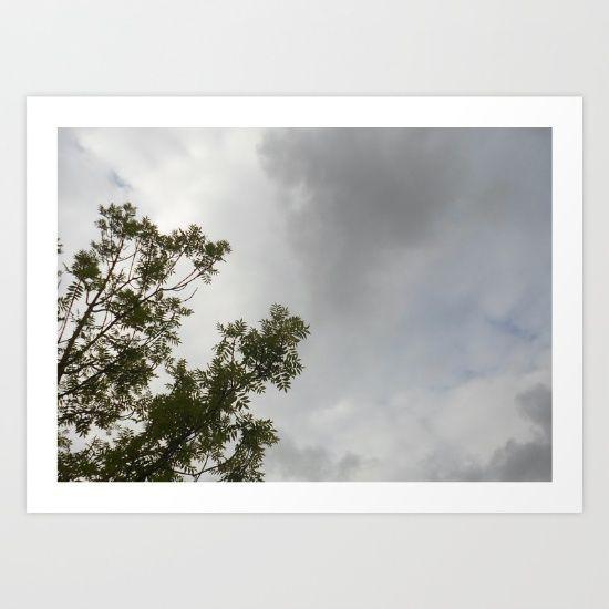 Feuillage dans le vent
