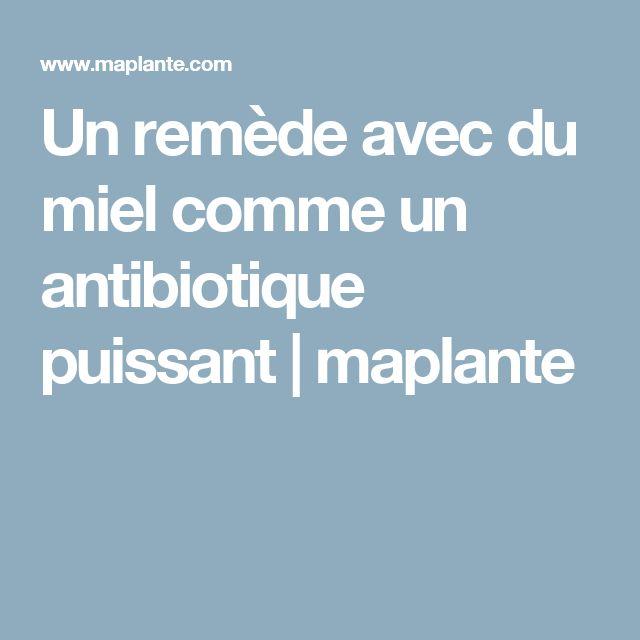 Un remède avec du miel comme un antibiotique puissant   maplante
