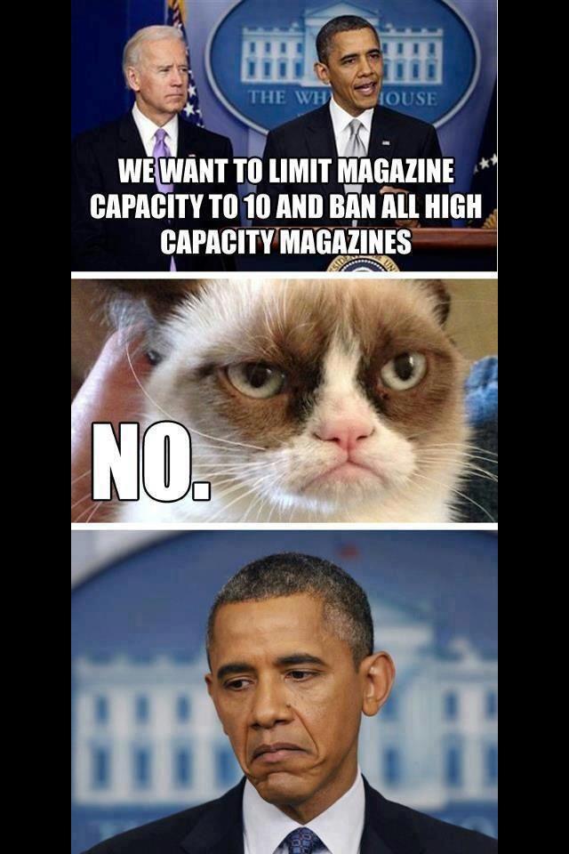 good grumpy cat   gun ...