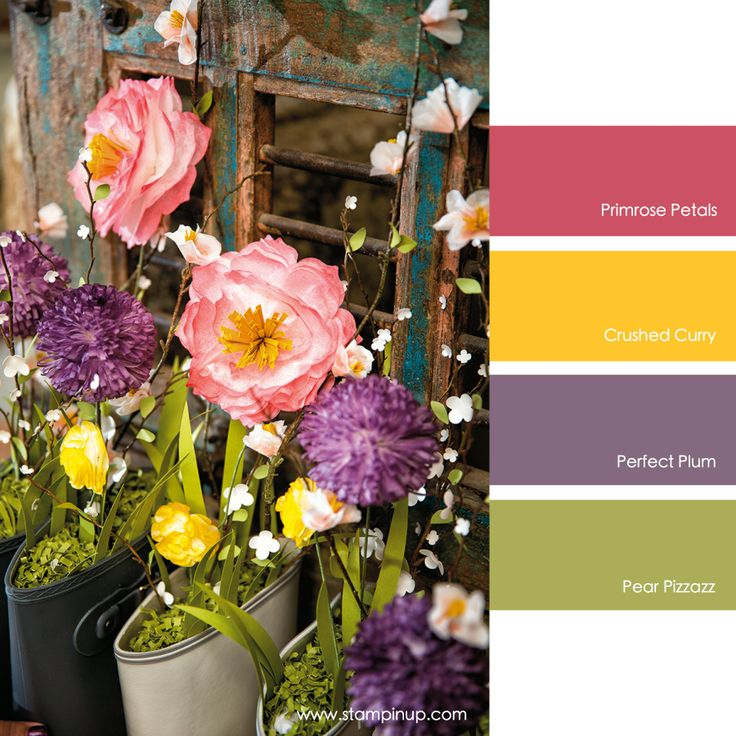 Primrose Petals, Crushed Curry, Perfect Plum, Pear Pizzazz #stampinupcolorcombos
