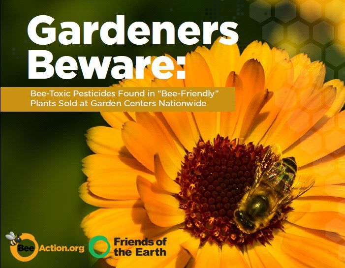Your Garden May Be Harming the Bees, Not Helping Them