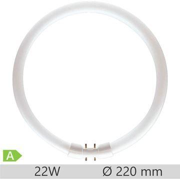 Tub fluorescent circular Philips TL5 Circular 22W, 2GX13, tub C-T5, 8000 ore, lumina neutra