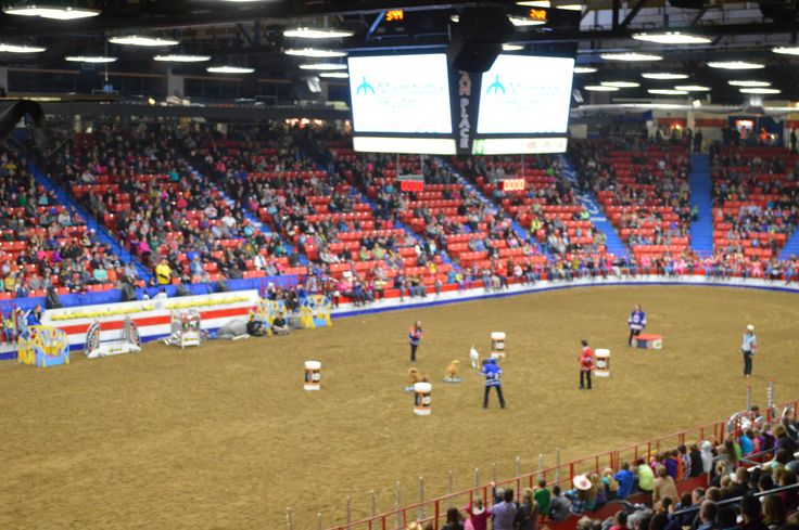 Superdogs at the Royal MB Winter Fair in Westman Place, Keystone Centre - Brandon, MB