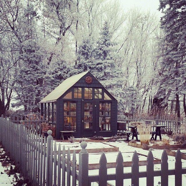 Winter days in the garden. #greenhouse