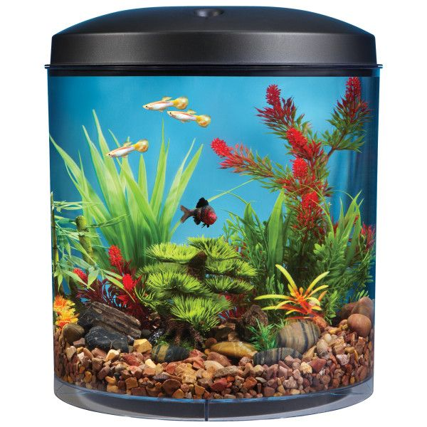 Top Fin AquaScene 180 3.5 Gallon Aquarium | Aquariums | PetSmart